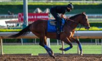 Horse Racing Off to Slow Start in California