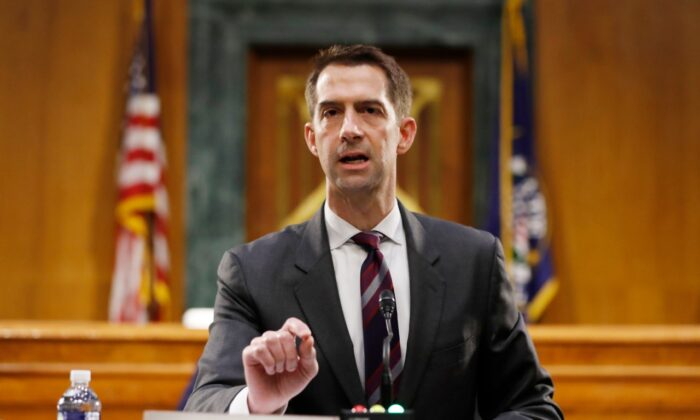 Sen. Tom Cotton (R-Ark.) speaks during a Senate Intelligence Committee nomination hearing on Capitol Hill in Washington, on May 5, 2020. (Andrew Harnik-Pool/Getty Images)