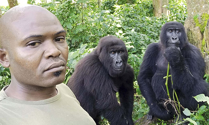 Warden Patrick Sadiki Karabaranga and some  friends take a selfie together at Virunga National Park in Rumangabo. (Caters News)