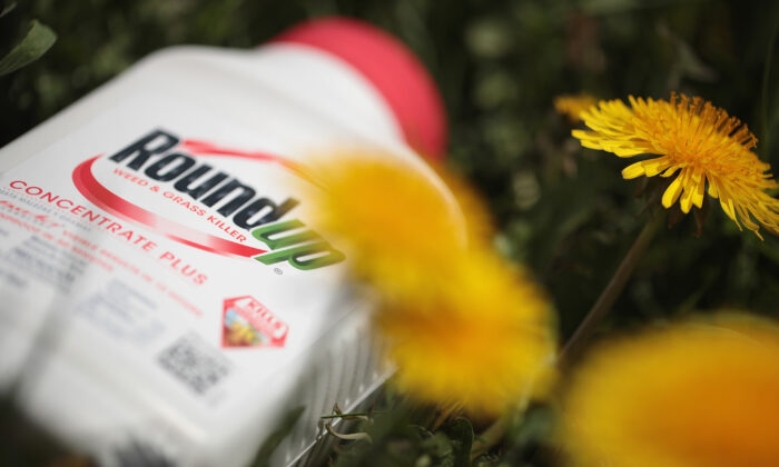 Roundup weed killer is shown on May 14, 2019 in Chicago, Ill. (Scott Olson/Getty Images)