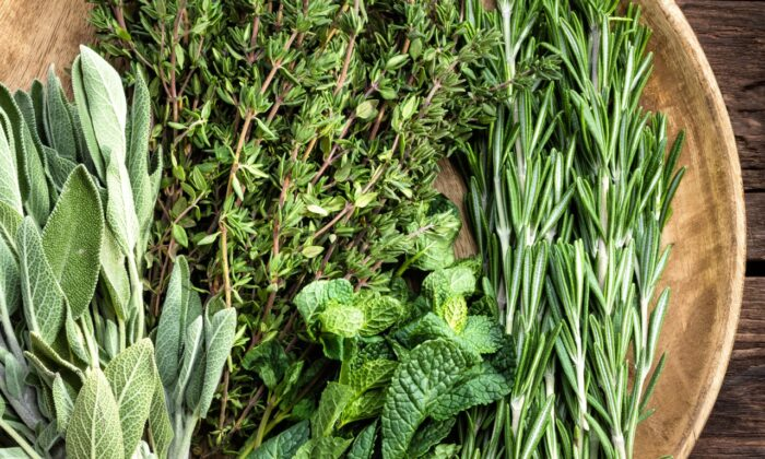 Fresh herbs are essential to many traditional Tuscan dishes, in every season. (Sea Wave/Shutterstock)
