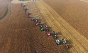 Community Rallied to Harvest 450 Acres in 10 Hours for Farmer With Terminal Cancer