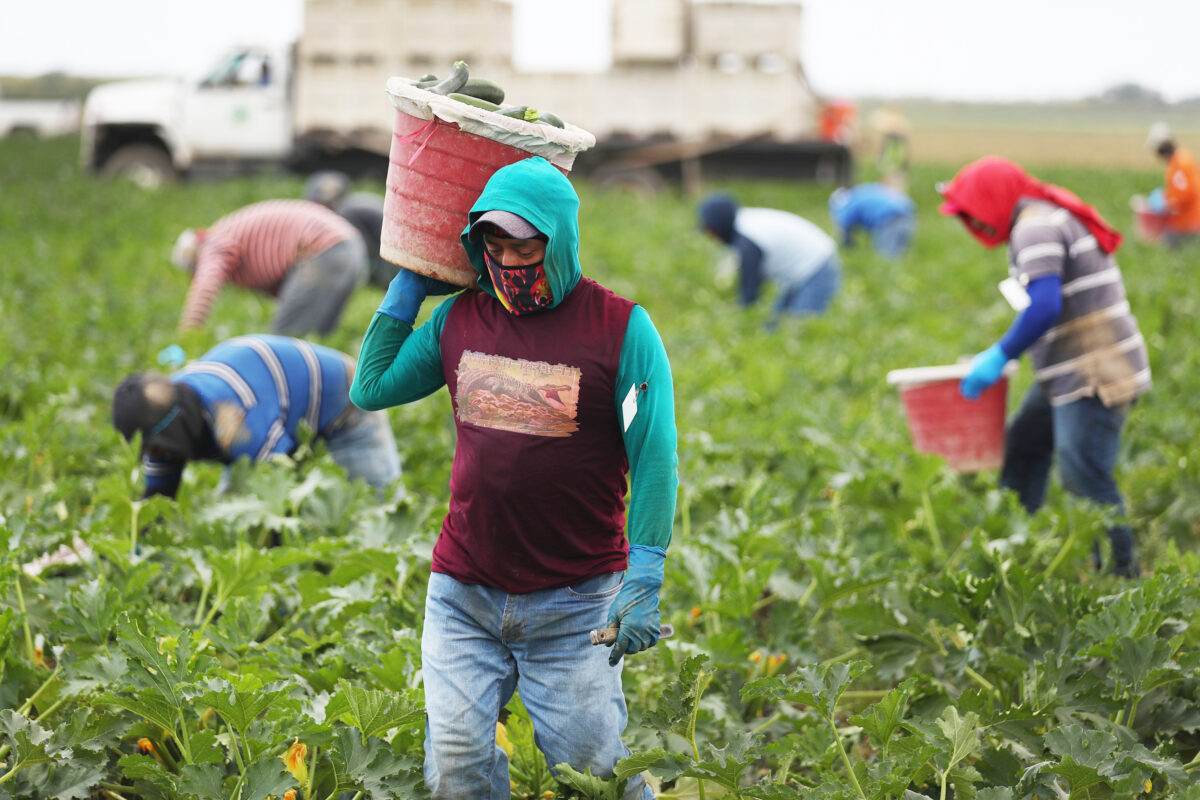 Farm Workers Florida pandemic
