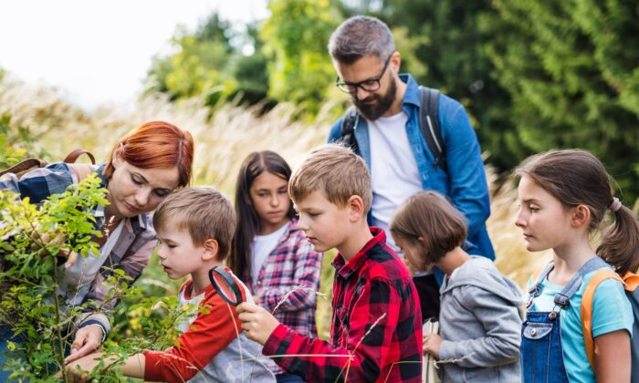 Outdoor learning can make it easier to maintain social distancing while learning and can help children do better in math and science. (Halfpoint/Shutterstock)