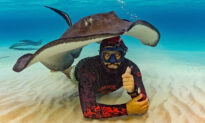 Helpful Stingray Uses Its Body as a Tent for Diver During Underwater Photoshoot on Ocean Floor
