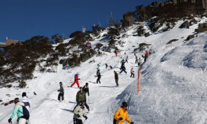 Tobogganing, Sledding and Snow Tubing Banned at Kosciuszko Snowfields