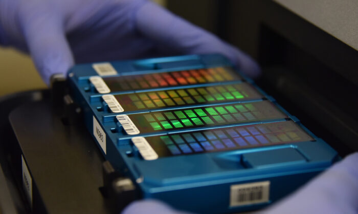A technician places an array containing DNA information in a scanner in Beijing on Aug. 22, 2018. (GREG BAKER/AFP via Getty Images)