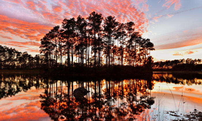 Sunset on Long Pines Key Lake, Everglades.(Shutterstock)