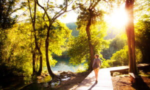 Fresh Air for the Soul: Celebrating Summer in a Hard Time