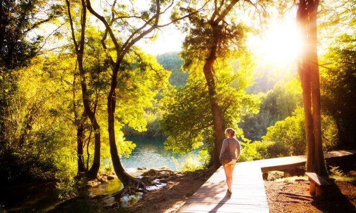 Walking is good for us, a restorer of both mind and body.. (Dennis van de Water/Shutterstock)