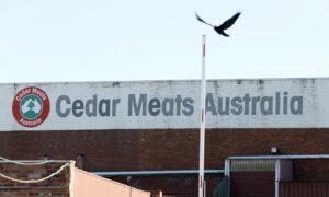 Melbourne Virus Hotspot Home to Cedar Meats, Source of Previous Outbreak
