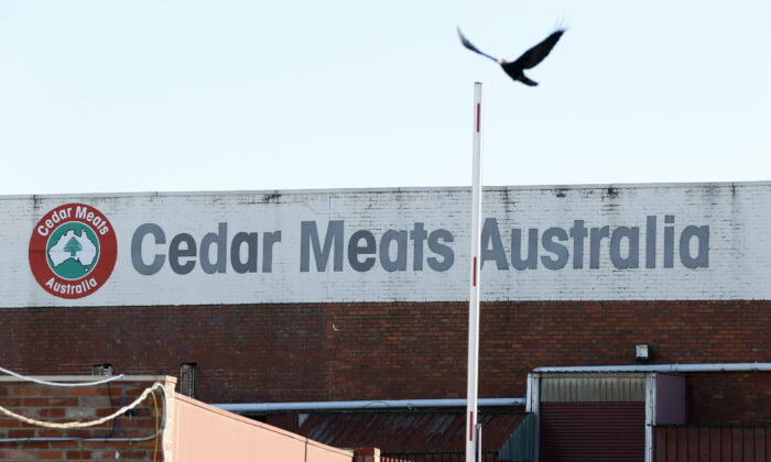 Cedar Meats abattoir in Brooklyn, Brimbank, Victoria, Australia on May 5, 2020. (Darrian Traynor/Getty Images)