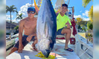 Fishermen in Hawaii Caught 220 Pounds of Tuna and Donated It to Health Care Workers