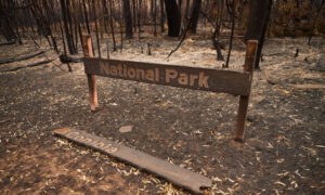 Record Land Purchase for NSW National Park