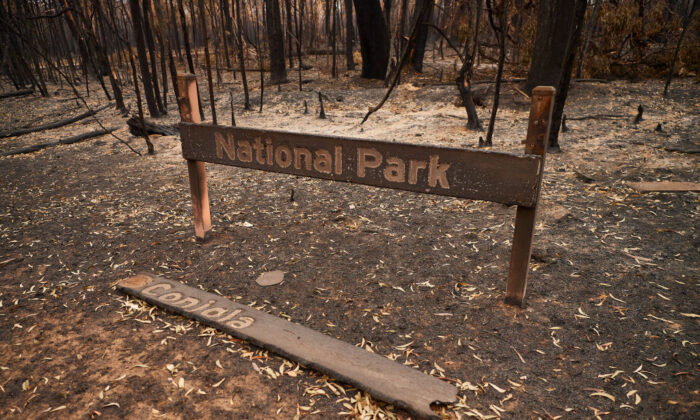 """A burnt out """"Conjola National Park"""" sign is pictured on January 05, 2020 in Conjola, NSW, Australia. (Brett Hemmings/Getty Images)"""