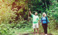 Forest Bathing for Immune Support