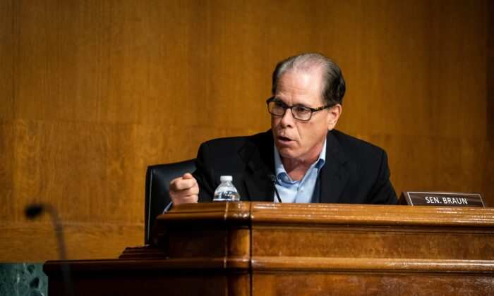 Sen. Mike Braun (R-Ind.) speaks in Washington on May 20, 2020. (Al Drago/Pool/AFP via Getty Images
