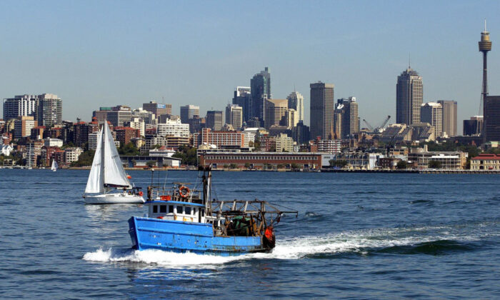 A deep sea fishing boat heads out of the harbour with a backdrop of the Sydney skyline, 02 April 2005. (ROB ELLIOTT/Getty Images)