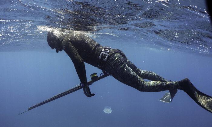 Underwater spearfishing stock photo, July 29, 2019. (Ibrahim Chalhoub/AFP via Getty Images)