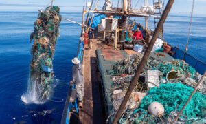 Massive Pacific Ocean Cleanup Sets Record, Hauls Over 100 Tons of Toxic Plastic Waste