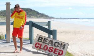 Western Australia Shark Victim Search Enters Third Day