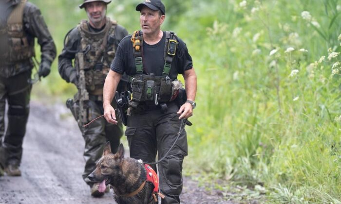 A K9 unit and other police officers search a back road on July 11, 2020 in St-Apollinaire, Que. (The Canadian Press/Jacques Boissinot)