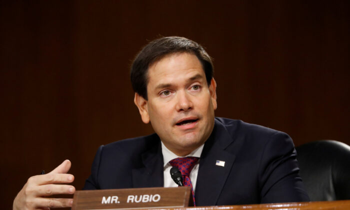 Sen. Marco Rubio (R-Fla.) speaks during a hearing on Capitol Hill in Washington, on May 5, 2020. (Andrew Harnik/Pool via Reuters)