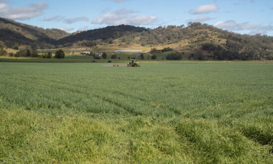 Australian Farmers Want Economic Recovery to Go Rural