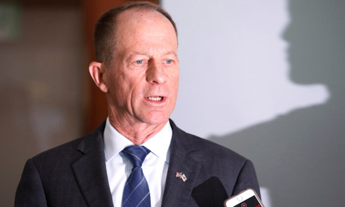 David Stilwell, U.S. Assistant Secretary for East Asian and Pacific Affairs, answers reporters' questions after a meeting with his South Korean counterpart Cho Sei-young at the Foreign Ministry in Seoul, South Korea, on Nov. 6, 2019.   (Heo Ran/File Photo/Reuters)