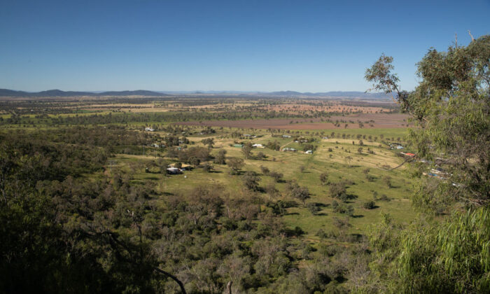 The view from Porcupine lookout is seen overlooking rural land in north west New South Wales on May 04, 2020 in Gunnedah, Australia. ( Mark Kolbe/Getty Images)