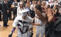 A Lifetime Walk To Graduation Ceremony