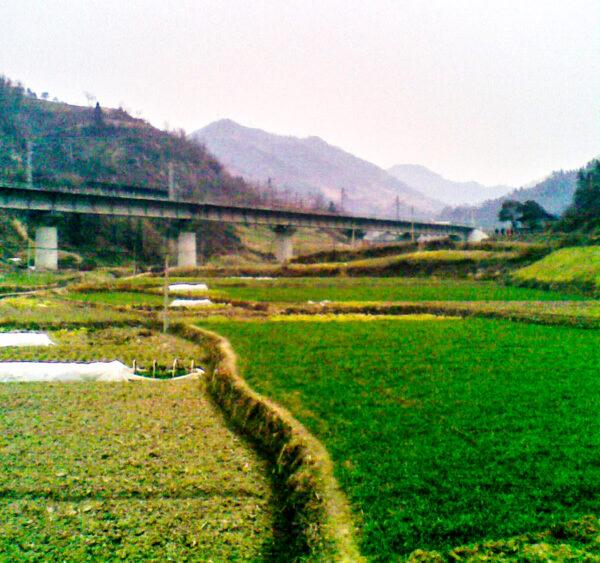 shiyan jiang lianjiao hometown