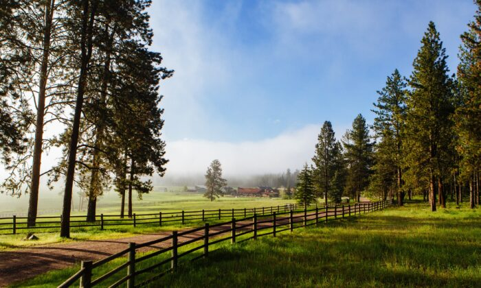 The luxurious Paws Up resort is set on a 37,000-acre ranch in Montana. (Courtesy of Paws Up)