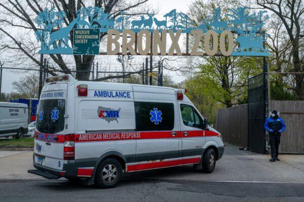 Bronx Zoo coronavirus