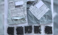 US Residents Receive Mysterious Seed Packages From China