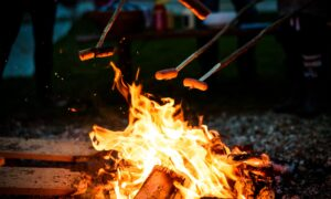 A Beginner's Guide to Campfire Cooking