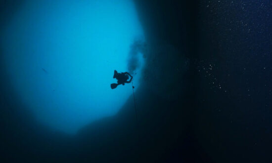 Scientists Dive to the Bottom of Mysterious 'Blue Hole' Off the Coast of Sarasota, Florida