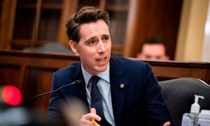 Sen. Josh Hawley (R-Mo.) speaks during the Senate Small Business and Entrepreneurship Hearings on Capitol Hill in Washington on June 10, 2020. (Al Drago/AFP via Getty Images)