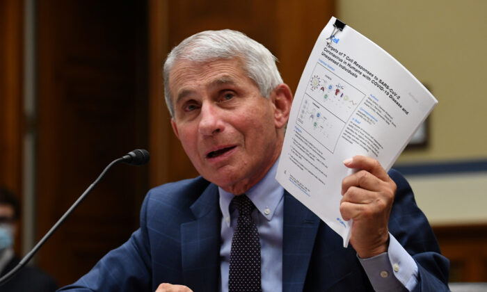 Dr. Anthony Fauci, director of the National Institute for Allergy and Infectious Diseases, testifies during the House Select Subcommittee on the Coronavirus Crisis hearing in Washington, on July 31, 2020. (Kevin Dietsch/Pool via Reuters)