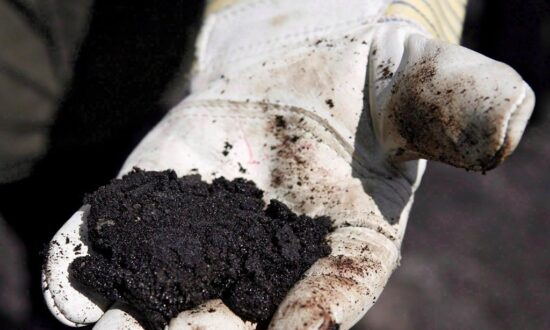 Oilsands Environmental Monitoring Budget Cut Due to COVID-19