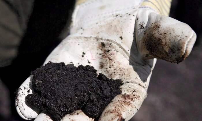 An oil worker holds raw sand bitumen near Fort McMurray, Alta., on July 9, 2008. (The Canadian Press/Jeff McIntosh)