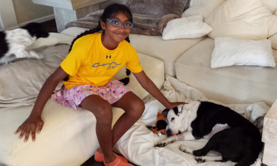 Adopted 14-Year-Old Girl Helps Senior Dogs Find a Forever Home Just Like She Did