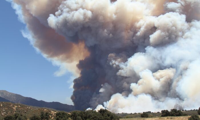 The Apple Fire blazes in Southern California, seen on Aug. 1, 2020. (Brad Jones/The Epoch Times)