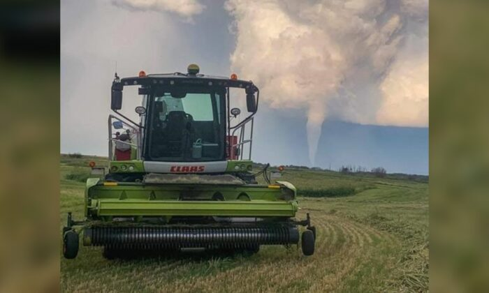 A funnel cloud is seen in the distance of a farmer's field near Virden, Manitoba, Canada, on Aug. 7, 2020. (HO-Wyatt Hiebert/The Canadian Press)