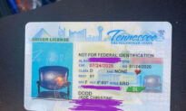 Woman Is Stunned When Her New Driver's License Comes Back With Picture of Empty Chair