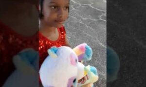 5-Year-Old Girl Killed While Playing in Her Home in South Carolina: Police