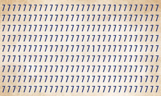 30-Second Challenge: How Fast Can You Find the Odd One Out in This Puzzle?