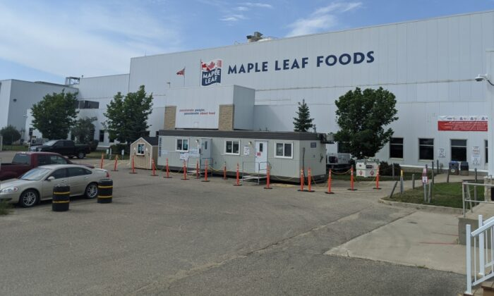 The Maple Leaf Foods plant in Brandon, Man., in August 2020. (Ho - Maple Leaf Foods/The Canadian Press)