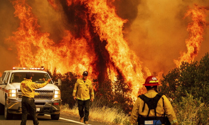 Flames from the LNU Lightning Complex fires leap above Butts Canyon Road in Lake County, Calif. on Aug. 23, 2020. (Noah Berger/AP)