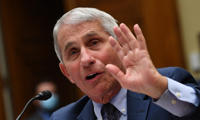 Dr. Anthony Fauci, director of the National Institute for Allergy and Infectious Diseases, testifies before Congress in Washington on July 31, 2020. (Kevin Dietsch/Pool/Getty Images)